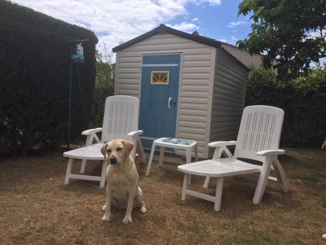 Les animaux sont acceptés dans les locations mobil-homes au Camping L'EDEN à Brétignolles sur Mer en vendée